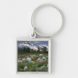 USA, Alaska, Alsek-Tatshenshini Wilderness. View Keychain