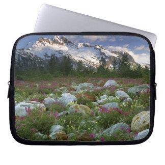 USA, Alaska, Alsek-Tatshenshini Wilderness. View Laptop Sleeve