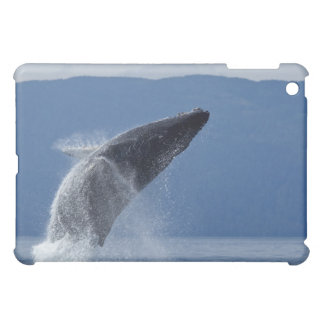 USA, Alaska, Angoon, Humpback Whale (Megaptera iPad Mini Cases