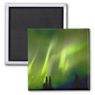 USA, Alaska, Chena Hot Springs. Aurora 3 Magnets