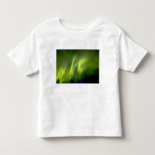 USA, Alaska, Chena Hot Springs. Aurora 3 Toddler T-shirt