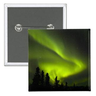 USA, Alaska, Chena Hot Springs. Aurora Borealis 2 Pins