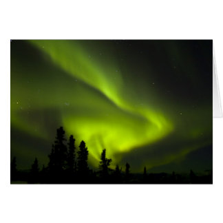 USA, Alaska, Chena Hot Springs. Aurora Borealis 2 Greeting Cards