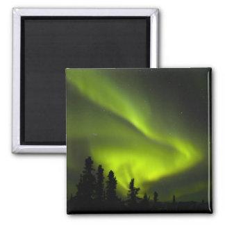 USA, Alaska, Chena Hot Springs. Aurora Borealis 2 Magnets