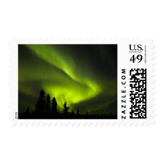 USA, Alaska, Chena Hot Springs. Aurora Borealis 2 Postage