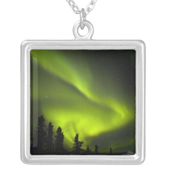USA, Alaska, Chena Hot Springs. Aurora Borealis 2 Silver