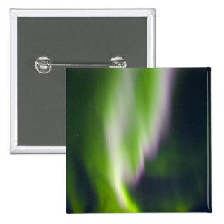 USA, Alaska, Chena Hot Springs. Aurora Borealis Pins
