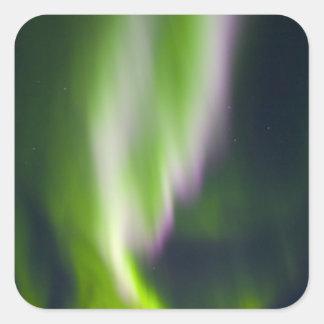 USA, Alaska, Chena Hot Springs. Aurora Borealis Sticker