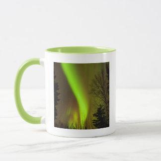 USA, Alaska, Chena Hot Springs. View Of Aurora Mug