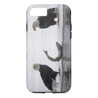 USA, Alaska, Chilkat Bald Eagle Preserve. Pair iPhone 7 Case