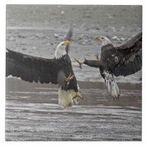 USA, Alaska, Chilkat Bald Eagle Preserve. Two Ceramic Tile