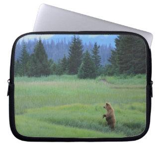 USA, Alaska, Clark Lake National Park. Grizzly Computer Sleeves