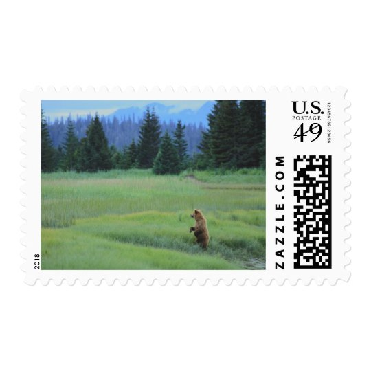 USA, Alaska, Clark Lake National Park. Grizzly Postage
