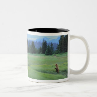 USA, Alaska, Clark Lake National Park. Grizzly Two-Tone Coffee Mug