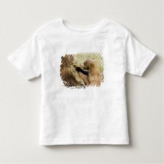 USA. Alaska. Coastal Brown Bear cubs at Silver Toddler T-shirt