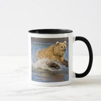 USA. Alaska. Coastal Brown Bear fishing for 2 Mug