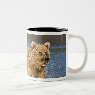 USA. Alaska. Coastal Brown Bear fishing for 2 Two-Tone Coffee Mug