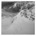 USA, Alaska, Denali National Park, Aerial view Ceramic Tile