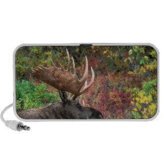 USA, Alaska, Denali National Park, Bull Moose iPod Speakers