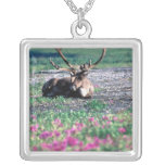USA, Alaska, Denali National Park, Caribou Square Pendant Necklace