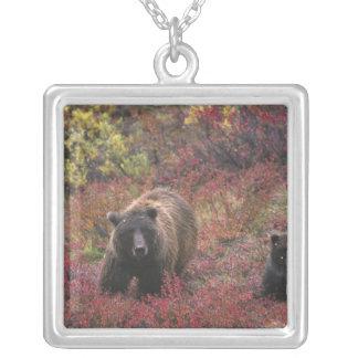USA, Alaska, Denali National Park. Grizzly bear Square Pendant Necklace