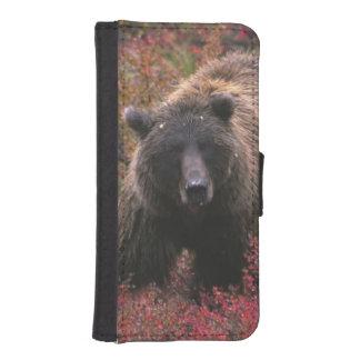 USA, Alaska, Denali National Park. Grizzly bear Phone Wallet Case