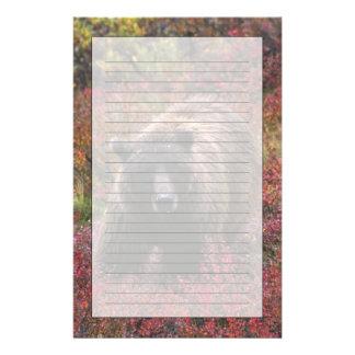 USA, Alaska, Denali National Park. Grizzly bear Stationery