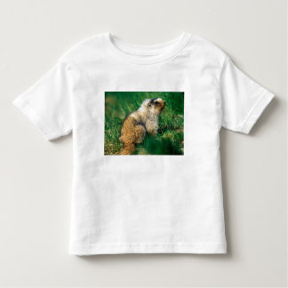USA, Alaska, Denali National Park, Hoary 2 T-shirt