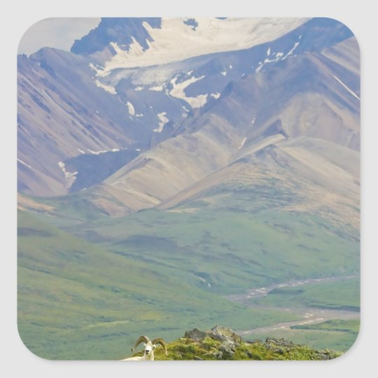USA, Alaska, Denali National Park, Polychrome Square Sticker
