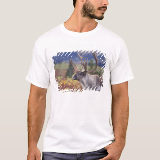 USA, Alaska, Denali NP, Caribou in fall tundra. T-Shirt