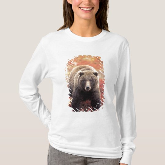 USA, Alaska, Denali NP, female Grizzly Bear T-Shirt