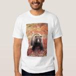 USA, Alaska, Denali NP, female Grizzly Bear T-shirt