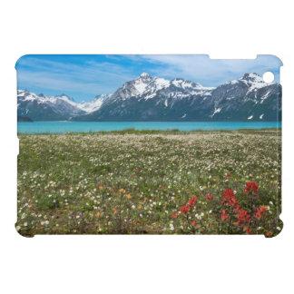 USA, Alaska, Glacier Bay National Park 2 iPad Mini Case