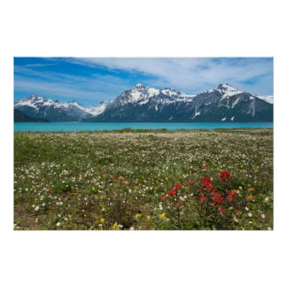 USA, Alaska, Glacier Bay National Park 2 Poster
