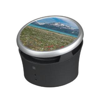 USA, Alaska, Glacier Bay National Park 2 Speaker