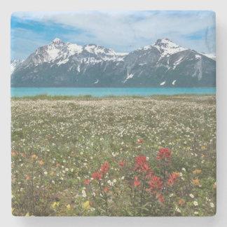 USA, Alaska, Glacier Bay National Park 2 Stone Coaster