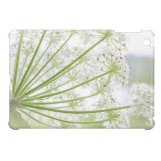 USA, Alaska, Glacier Bay National Park 3 iPad Mini Covers