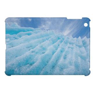 USA, Alaska, Glacier Bay National Park 4 iPad Mini Cover