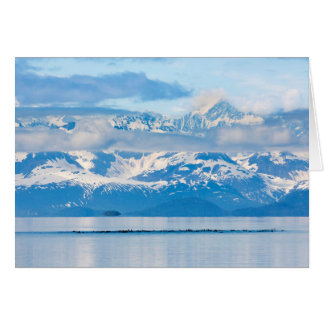 USA, Alaska, Glacier Bay National Park 7 Card