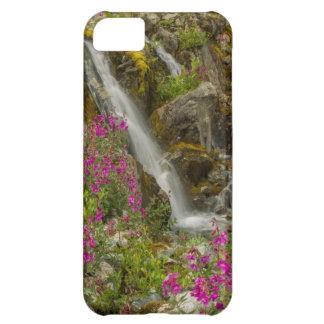 USA, Alaska, Glacier Bay National Park. Fireweed iPhone 5C Cover
