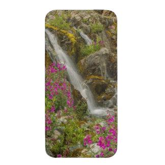 USA, Alaska, Glacier Bay National Park. Fireweed iPhone SE/5/5s/5c Pouch