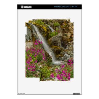USA, Alaska, Glacier Bay National Park. Fireweed Skins For iPad 3