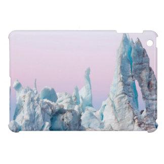 USA, Alaska, Glacier Bay National Park. Margerie Case For The iPad Mini