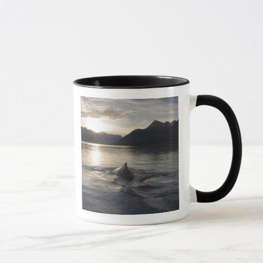 USA, Alaska, Glacier Bay National Park, Mug