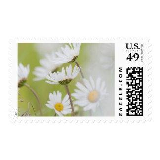 USA, Alaska, Glacier Bay National Park Postage