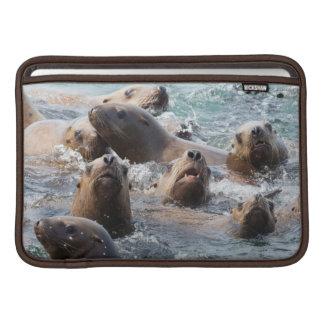 USA, Alaska, Glacier Bay National Park. Steller Sleeve For MacBook Air