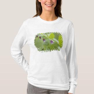 USA, Alaska, Glacier Bay National Park. T-Shirt