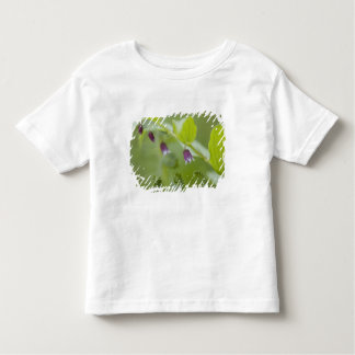 USA, Alaska, Glacier Bay National Park. Toddler T-shirt
