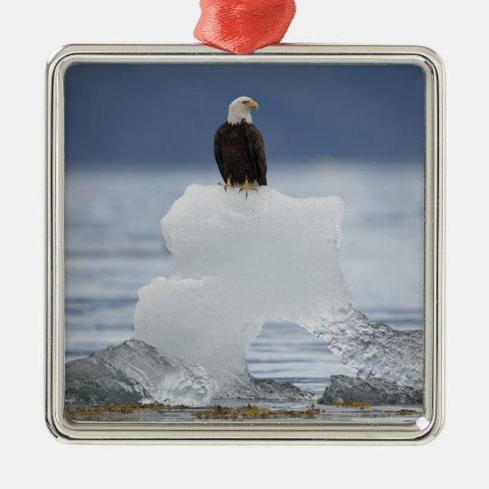 USA, Alaska, Holkham Bay, Bald Eagle Metal Ornament