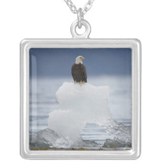 USA, Alaska, Holkham Bay, Bald Eagle Silver Plated Necklace